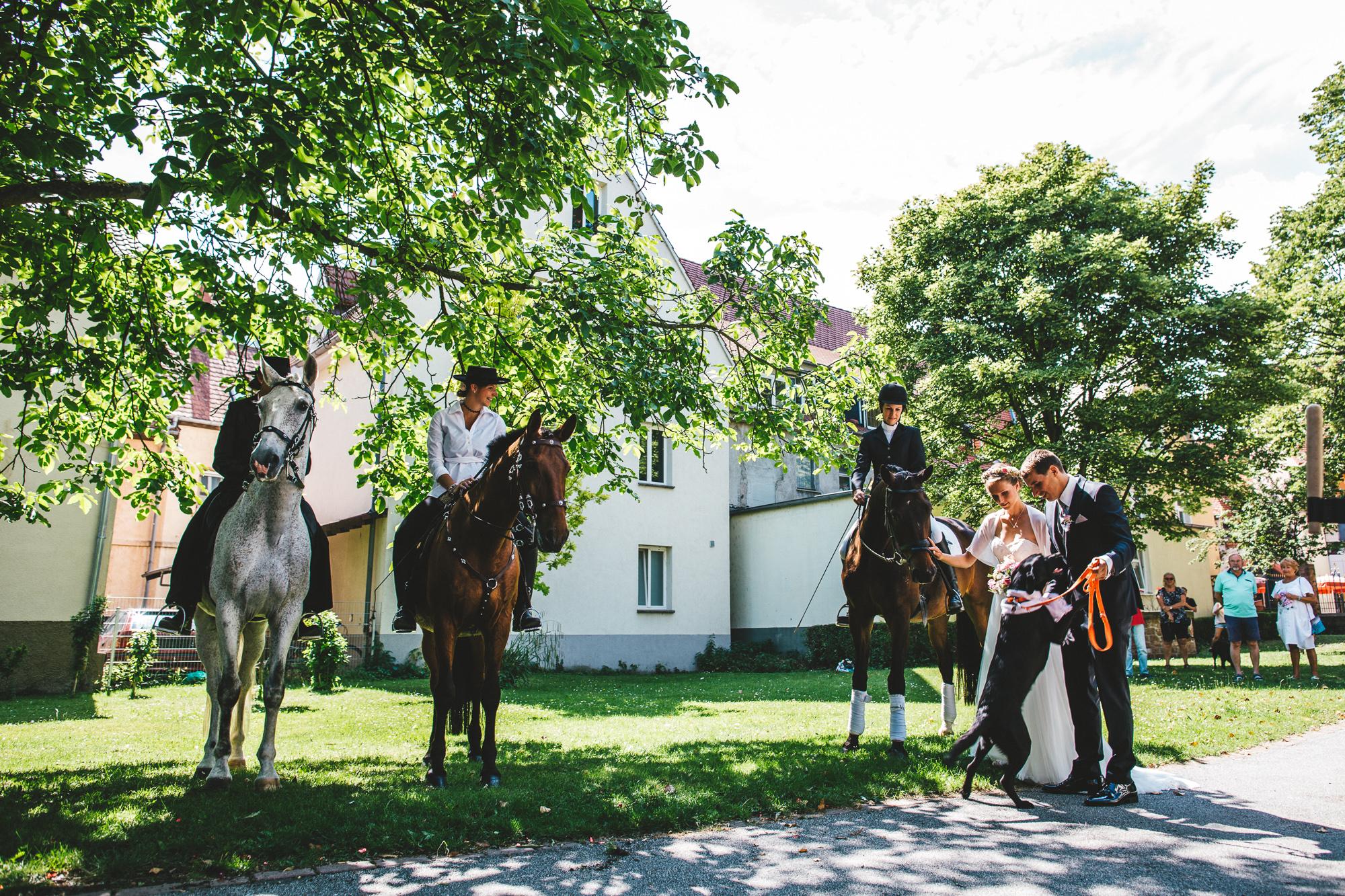 annethomas 130 - Hochzeit im wunderschönen Ladenburg in Eichenstolz